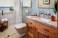 Accessible Bathroom Remodel (1)