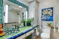 Accessible Bathroom with Pop of Color (1)