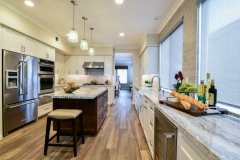 Whole Home Remodel (2)