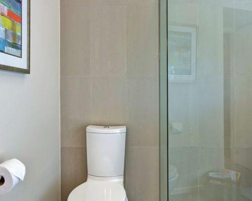 Escondido Bath Remodel (4)